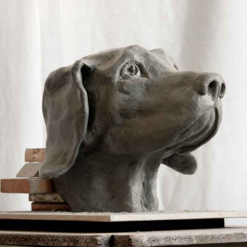 vancouver sculpture classes, portrait of dog, student work